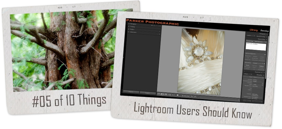 10 things new Lightroom users should know