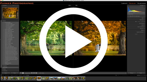 how to edit fall photos in lightroom