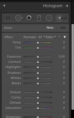lightroom brush presets