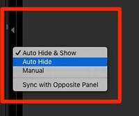 hide panel