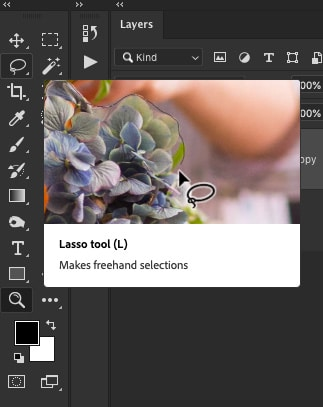 Search for the Photoshop Lasso Tool