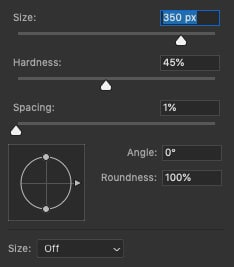 brush size too great then resize