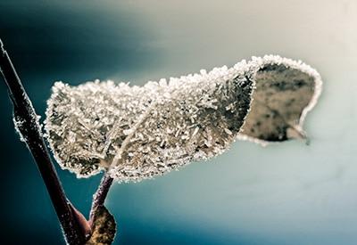Lightroom preset Winter