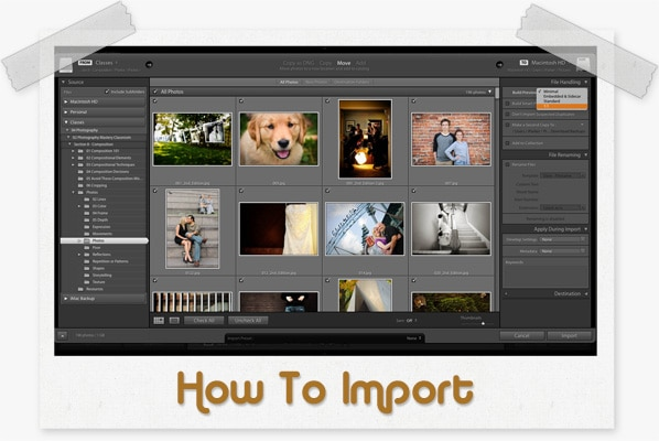 How to import into lightroom