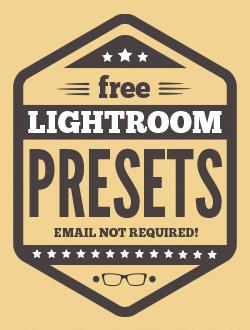 professional free lightroom filters instant download