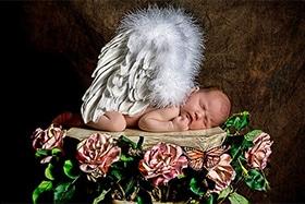newborn presets free