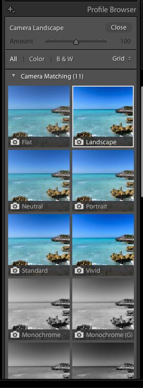 camera matching profiles