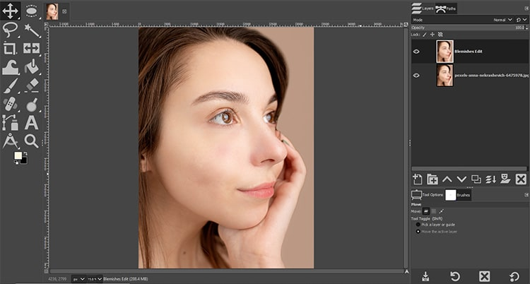final retouched image